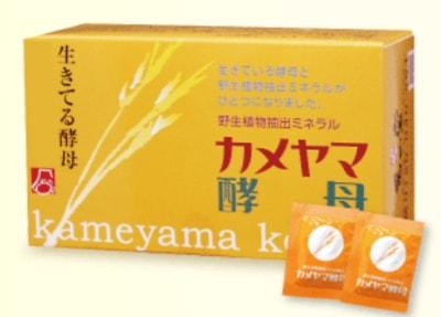 カメヤマ酵母の特徴